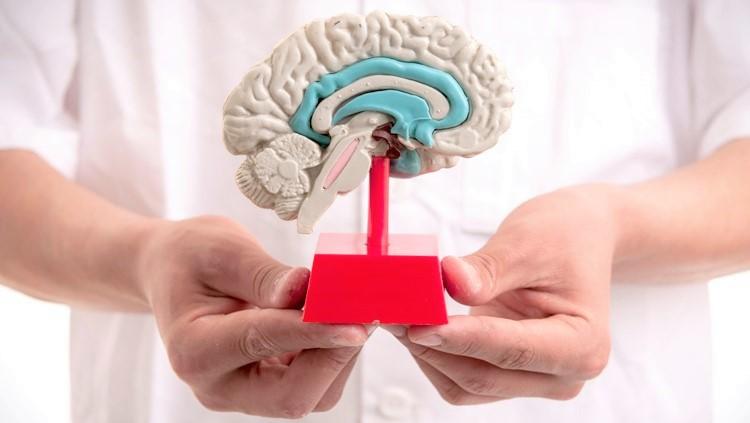 porazhenie-mozga